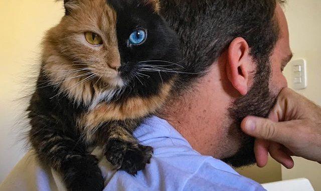 Tumblr noir chatte photos gros mecs avec grosse queue